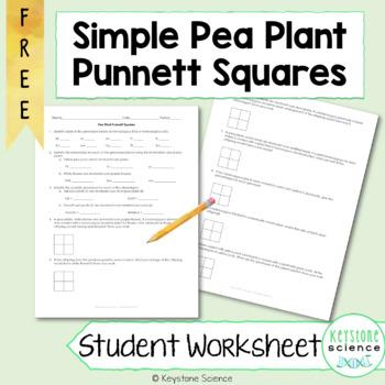 Simple Punnett Square Practice Problems