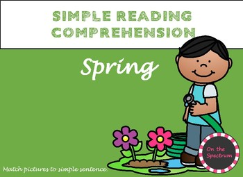 Simple Reading Comprehension