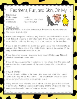 Simple Science: 12 Animal Adaptation Experiments for Elementary Classrooms