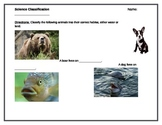 Simple Science Classification Activity