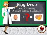 Science Experiment: Egg Drop
