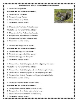 Simple Sentences Review: Squirrel and Raccoon Adventures