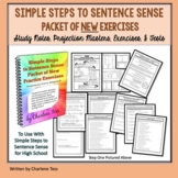Grammar Worksheets Packet of New Exercises | Simple Steps
