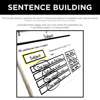 Simple Writing Level 2: Sentence Building