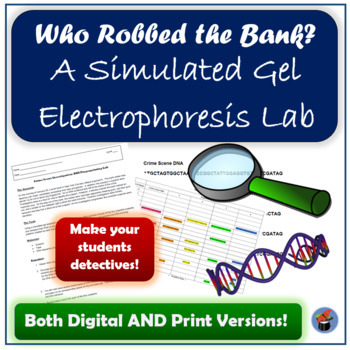 Simulated Gel Electrophoresis Lab: Who Robbed the Bank?