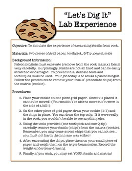 Simulating a Fossil Dig with Chocolate Chip Cookies