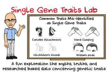 Single Gene Traits Lab Activity