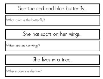 Single Sentence WH Comprehension Worksheets