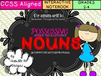 Singular, Plural, & Irregular Plural Possessive Nouns Interactive Notebook Pages