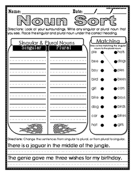Singular & Plural Noun Mini-Unit W/ Foldable