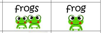Singular Plural Noun Sort