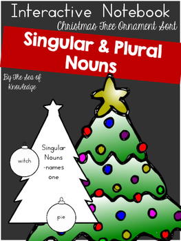 singular plural nouns by sea of knowledge teachers pay teachers - Plural Of Christmas