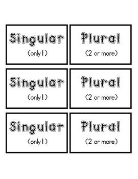 Singular & Plural Sort