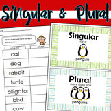 Singular & Plural Worksheets