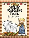 Singular Possessive Noun Worksheets