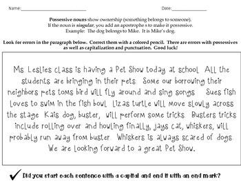 Singular Possessive Nouns: Pet Shop Writing