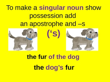 Singular Possessive Nouns for Visual Learners