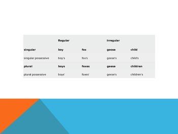 Singular Possessive and Plural Possessive Nouns