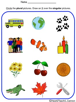 Singular and Plural Activity Sheet *FREE*