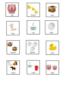 Picture Sort: Singular or Plural