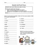 Singular and Plural Noun Freebie