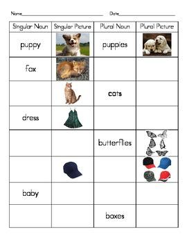 Singular and Plural Noun Practice Chart