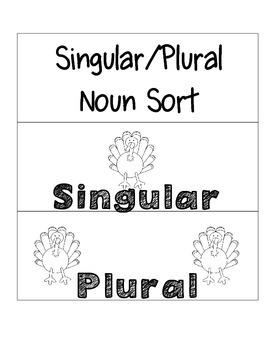 Singular and Plural Noun Sample