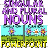 Singular and Plural Nouns PowerPoint Activity