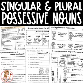 Singular and Plural Possessive Nouns Activities and Interactive Notebook Pages