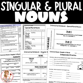 Singular and Plural Nouns Activities with Interactive Note