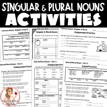 Singular and Plural Nouns Activities with Interactive Notebook Pages