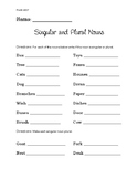 Singular and Plural Nouns Assessment