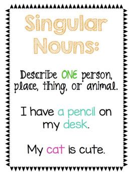 Singular and Plural Nouns NO PREP Packet