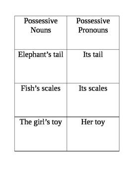 Singular and Plural Nouns, Possessive Nouns and Pronouns