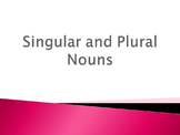 Singular and Plural Nouns PowerPoint Houghton Mifflin 8