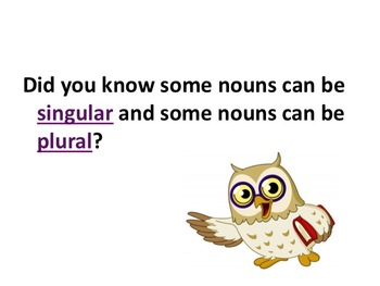 Singular and Plural Nouns Pratice Power Point