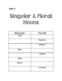 Singular and Plural Nouns Quiz