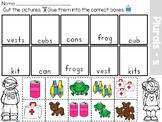 Singular and Plural Nouns Sort Worksheet Distance Learning