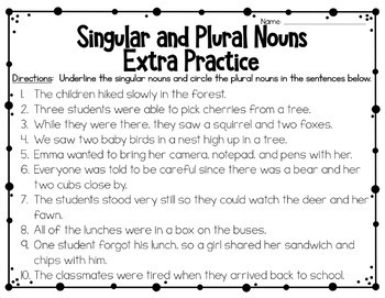 Singular and Plural Nouns Task Cards and Extra Practice
