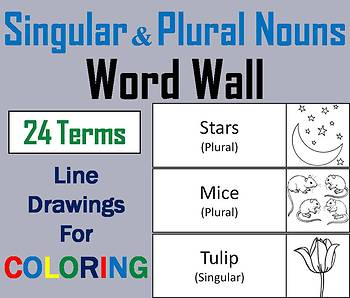 Singular and Plural Nouns Word Wall Cards