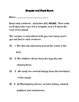Singular and Plural Nouns worksheet / Quiz
