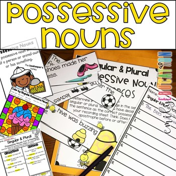 Singular and Plural Possessive Noun Activities