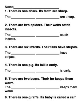 Singular and Plural Possessive Quiz/ Worksheet/ Test