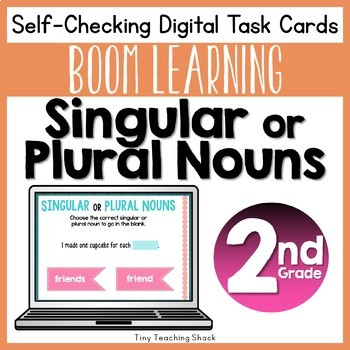 Singular or Plural Noun Boom Cards