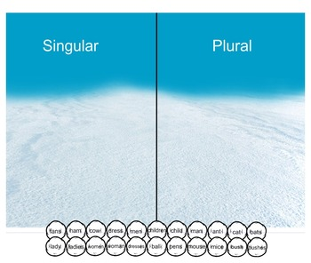Singular or Plural Nouns Sort - Winter  Snowball Theme