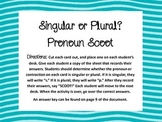 Singular or Plural? Pronoun Scoot