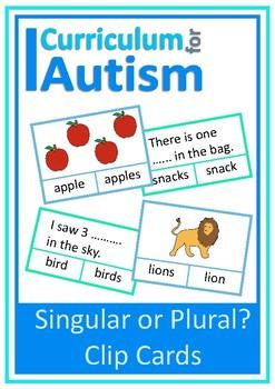 Singular Plural Vocabulary Cards Autism Special Education ESL