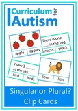 Singular Plural Vocabulary Cards Autism Literacy