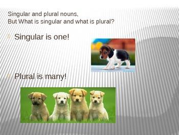 Singular / plural nouns using animals