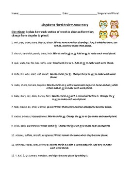Singular to Plural: Common Endings Worksheet and Answer Key